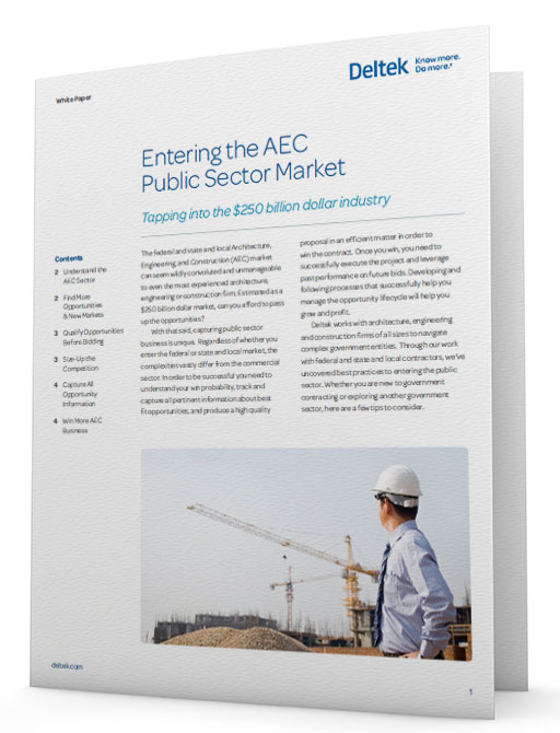 White Paper: Entering the AEC Public Sector Market