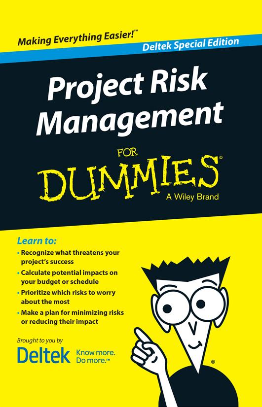 Risk management for dummies pdf